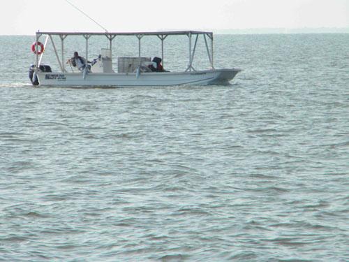 Метастазы Мексиканского залива. Часть 4